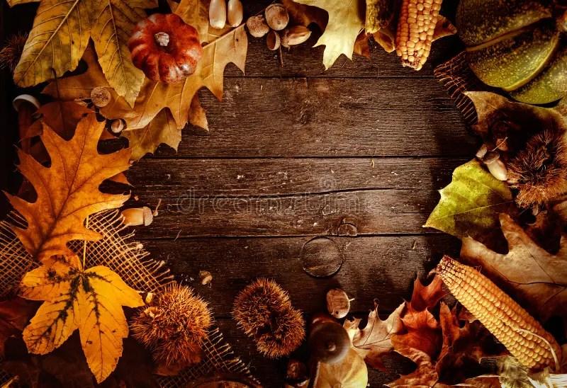 Fall Plate Wallpaper Thanksgiving Dinner Stock Photo Image Of Fresh Fruit