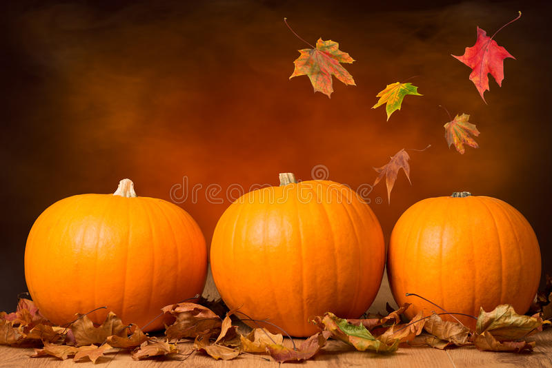 Design Love Fest Wallpaper Fall Three Pumpkins Stock Image Image Of Table Life Leaf