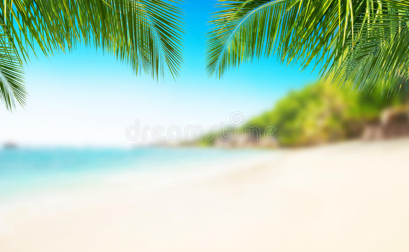 Tropical Beach With Sand, Summer Holiday Background Stock Image
