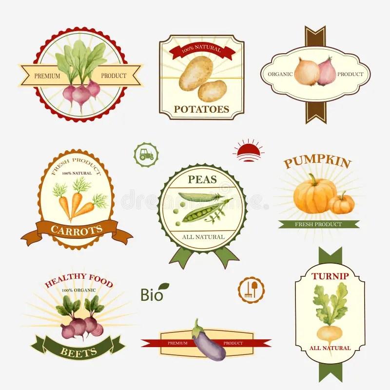Vegetables, Set Of Label Design Stock Vector - Illustration of peas