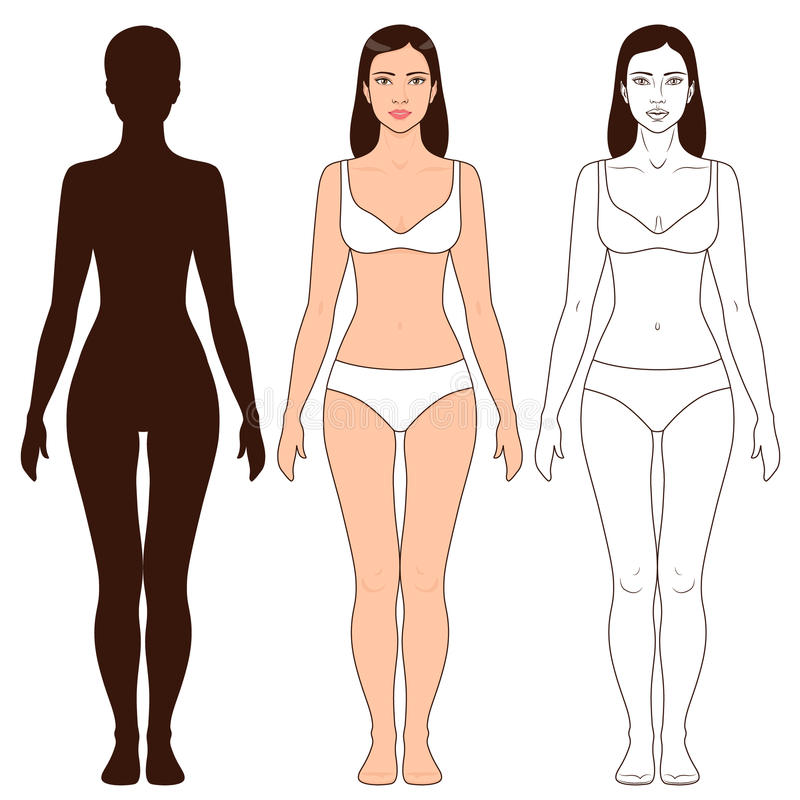 Woman Body Shape And Silhouette Template Stock Vector - Illustration