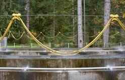 Environmental Salmon Fish Ladder Stock Image Image Of