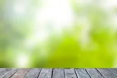Seasonal Fall Coffee Desktop Wallpaper Green Abstract Blur Nature Background Royalty Free Stock Photo