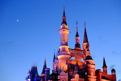 Disney Castle Stock Images Download 4219 Royalty Free