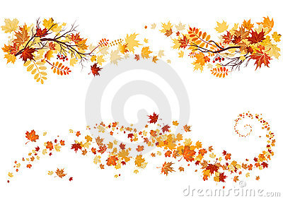 Free Animated Falling Leaves Wallpaper Autumn Leaves Border Royalty Free Stock Image Image