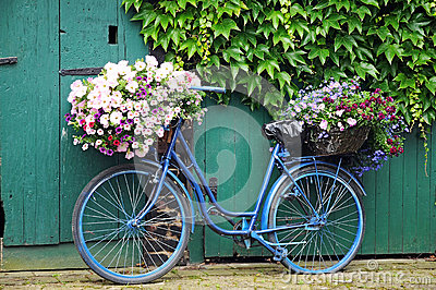 3d Wallpaper Lavender Bicycle With Flowers Stock Images Image 25541754
