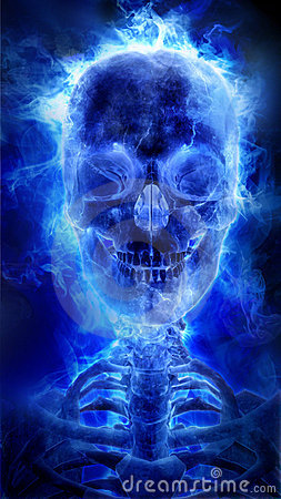 Tattoo Wallpaper 3d Blue Flaming Skull Royalty Free Stock Image Image 23024426