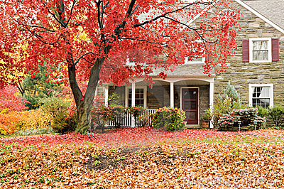 Free Desktop Wallpaper Fall Trees Family House With Front Lawn In Fall Colors Stock