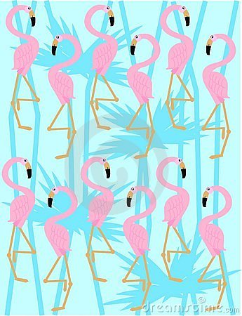 3d Dice Desktop Wallpaper Flamingo Pattern Stock Images Image 14579554