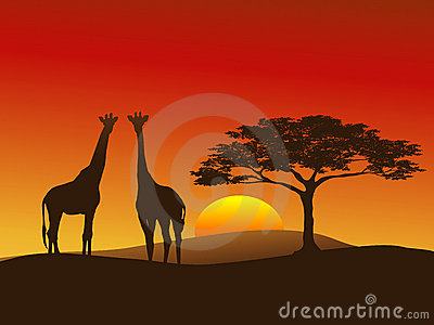 3d Wallpaper Cute Baby Giraffe Silhouette 2 Stock Photo Image 5711170