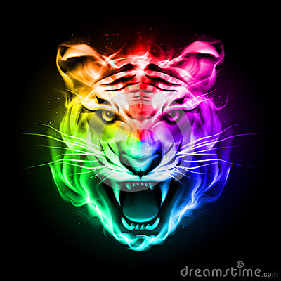 3d All Animal Wallpaper Head Of Tiger In Colorful Fire Stock Photography Image