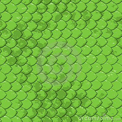 Fish 3d Wallpaper Download Lime Snake Texture Seamless Stock Image Image 3184351