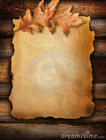 3d Wallpaper For Kids Old Scroll Paper With Oak Leaves On Wood Stock Image