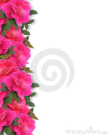 Google 3d Wallpapers Free Download Pink Roses Border Background Royalty Free Stock Image