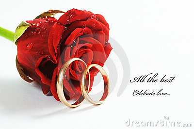 Black Text Wallpaper Red Rose And Wedding Ring Stock Image Image 12358701
