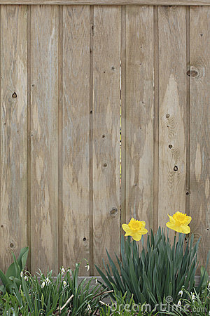 United States Wallpaper Iphone Spring Background Stock Photography Image 675892