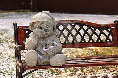 Free Cute Wallpapers With Quotes Teddy Bear On A Park Bench Royalty Free Stock Photos