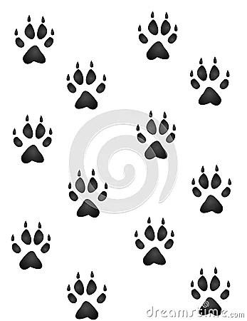 Cute Paw Print Wallpaper Wild Animal Paw Prints Royalty Free Stock Photo Image
