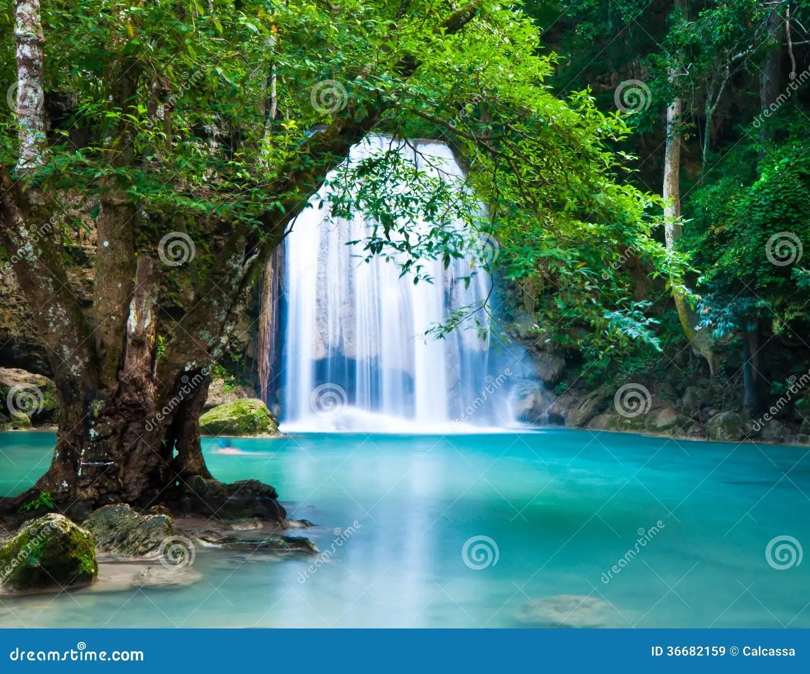 Kuang Si Falls Hd Wallpaper Acantilado De La Cascada En Bosque Profundo Imagen De