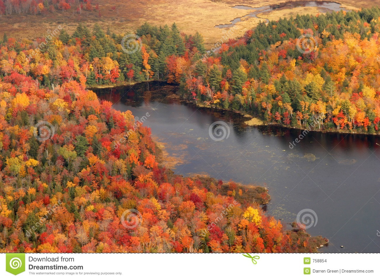 New Hampshire Fall Foliage Wallpaper Aerial View Of The Changing Fall Colors Of New England
