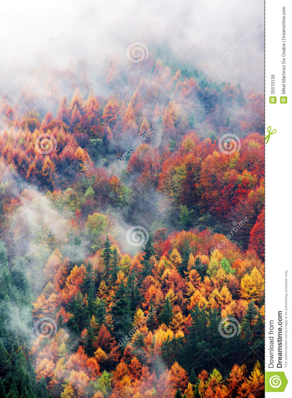 Panoramic Wallpaper Fall Aerial Of Autumn Forest Partly Covered By Morning Clouds