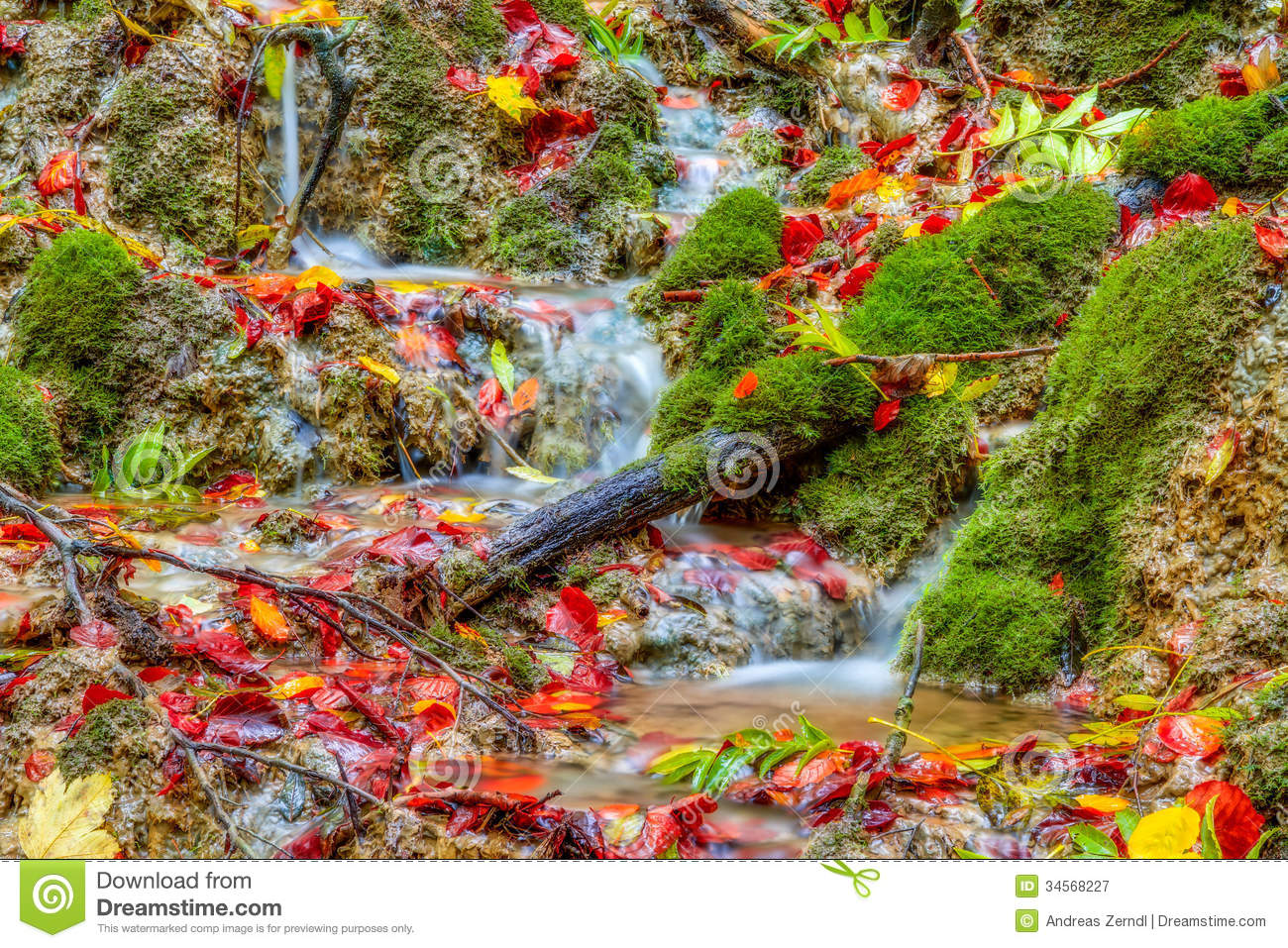 Kamin Clipart Amazing Autumn Forest Creek Royalty Free Stock Photography