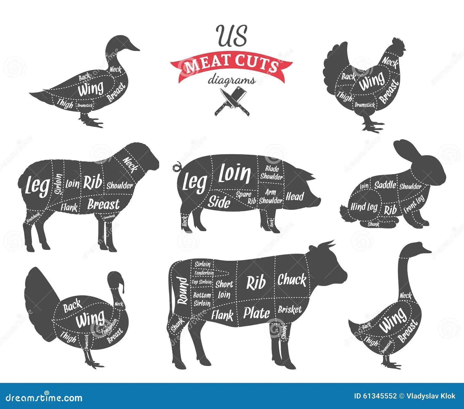 meat cut diagrams keysborough egg farm