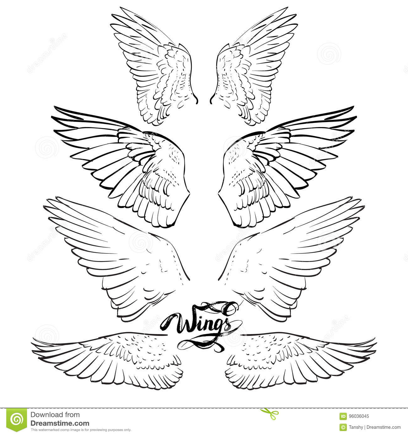 angel wing drawing