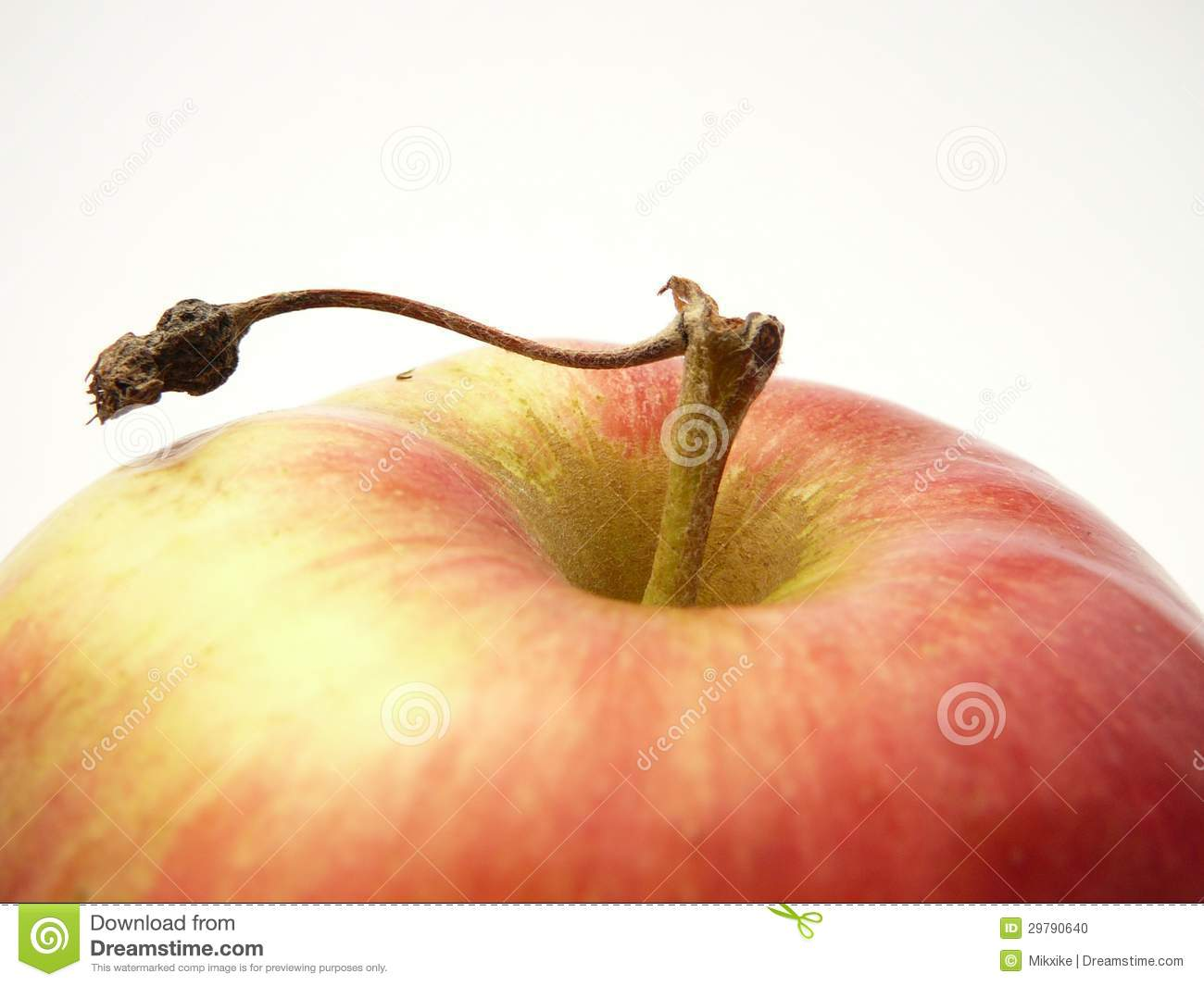 House Doctor Ornament Dreams Apple. Stock Photo - Image: 29790640