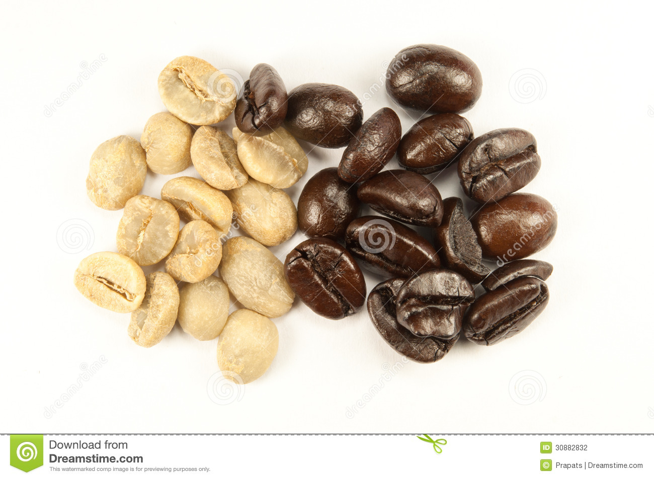 Coffee Arabica Coffee Bean Arabica Coffee Beans Stock Photography Image 30882832