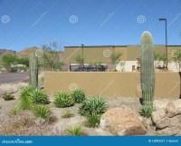 Arizona Backyard stock image. Image of gravel, walls ...