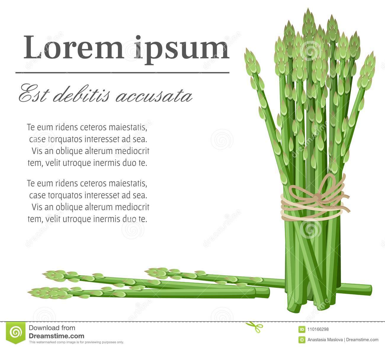 Wandposter Natur Asparagus Vegetable Plant Bunch Of Asparagus Stems Illustration