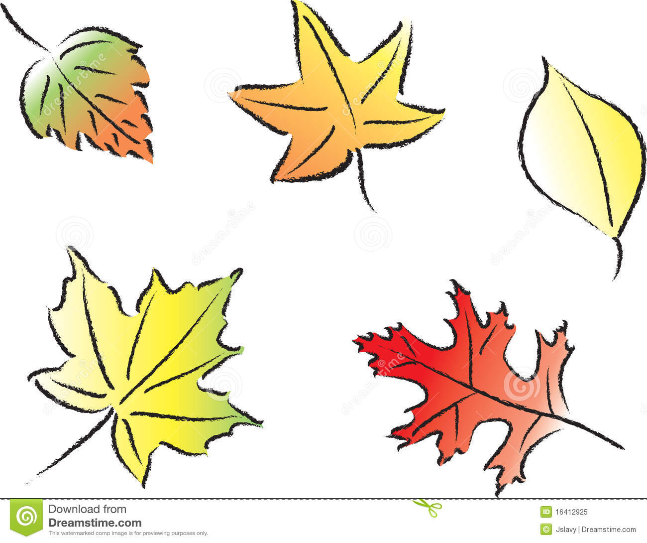 Animated Falling Leaves Wallpaper Assorted Fall Leaves Royalty Free Stock Photo Image