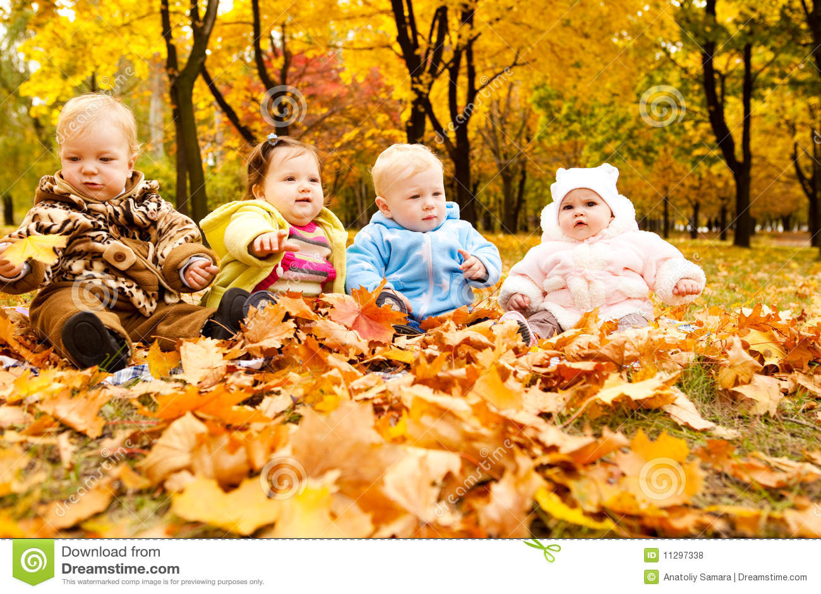 Pretty Little Girl Wallpaper Autumn Babies Royalty Free Stock Photos Image 11297338