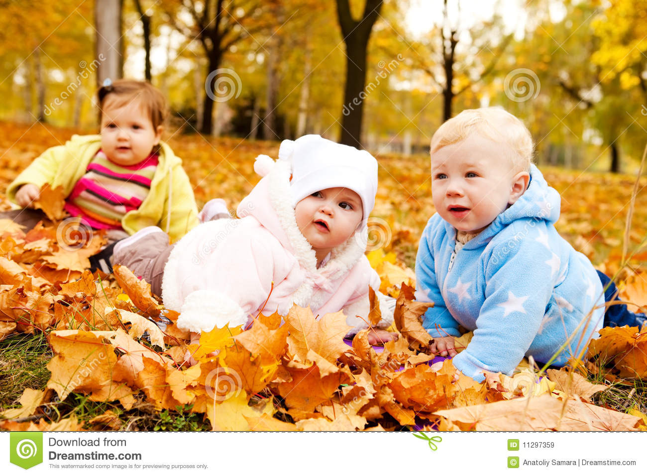 Happy Girl Boy Wallpaper Autumn Babies Royalty Free Stock Images Image 11297359