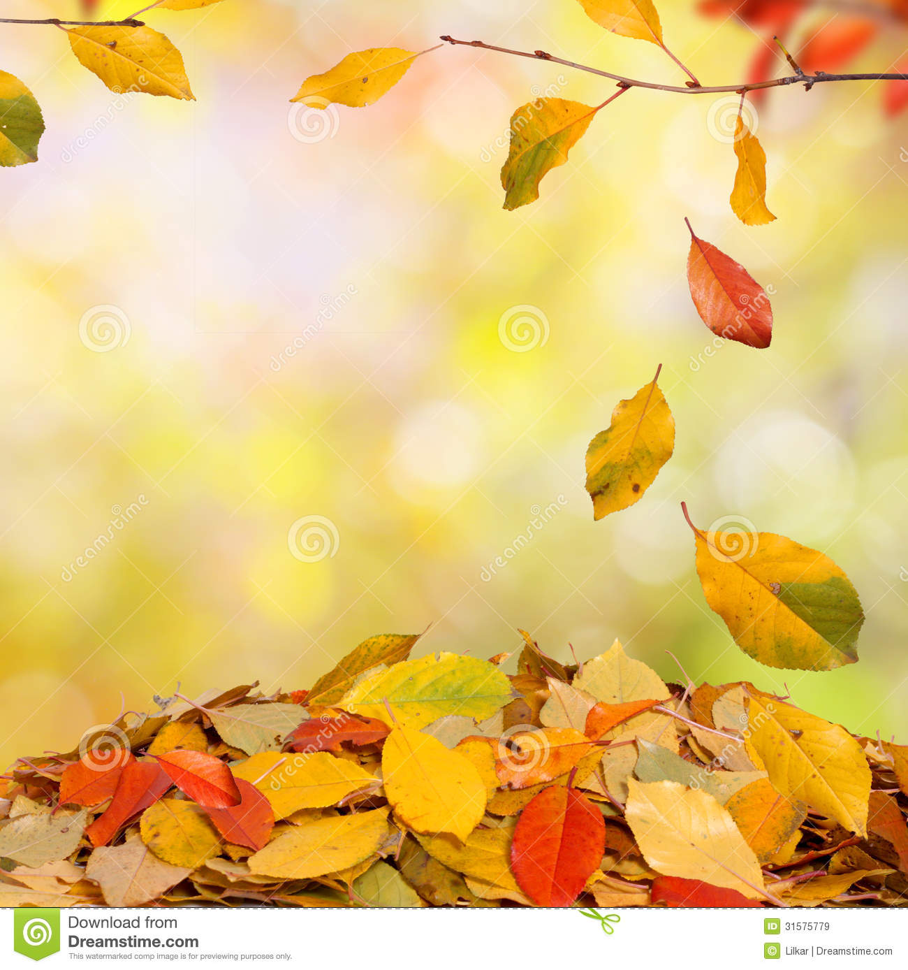 Falling Leaves Wallpaper Free Download Autumn Background Stock Image Image Of Environment Fall