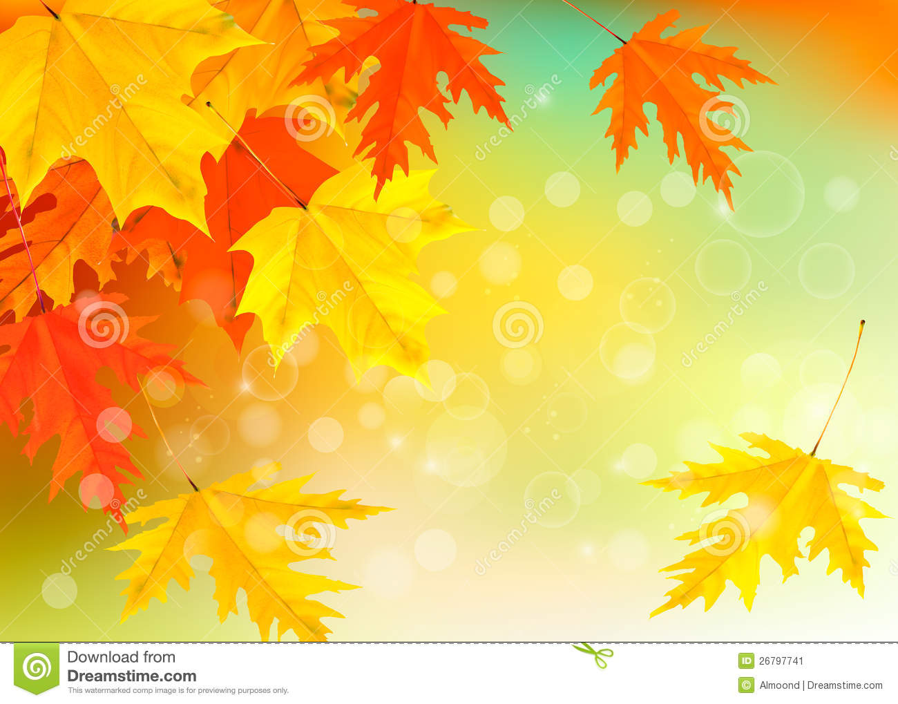 Fall Leaves Falling Wallpaper Autumn Background With Leaves Back To School Stock Image
