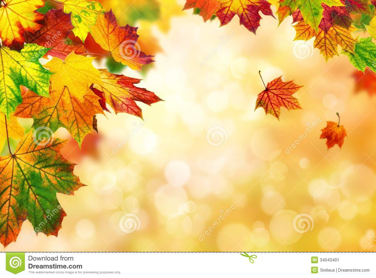 3d Falling Leaves Animated Wallpaper Autumn Bokeh Background Bordered With Leaves Stock Image
