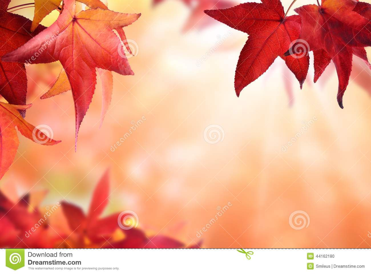 Fall Leaves Wallpaper Border Autumn Bokeh Background With Red Leaves Stock Photo
