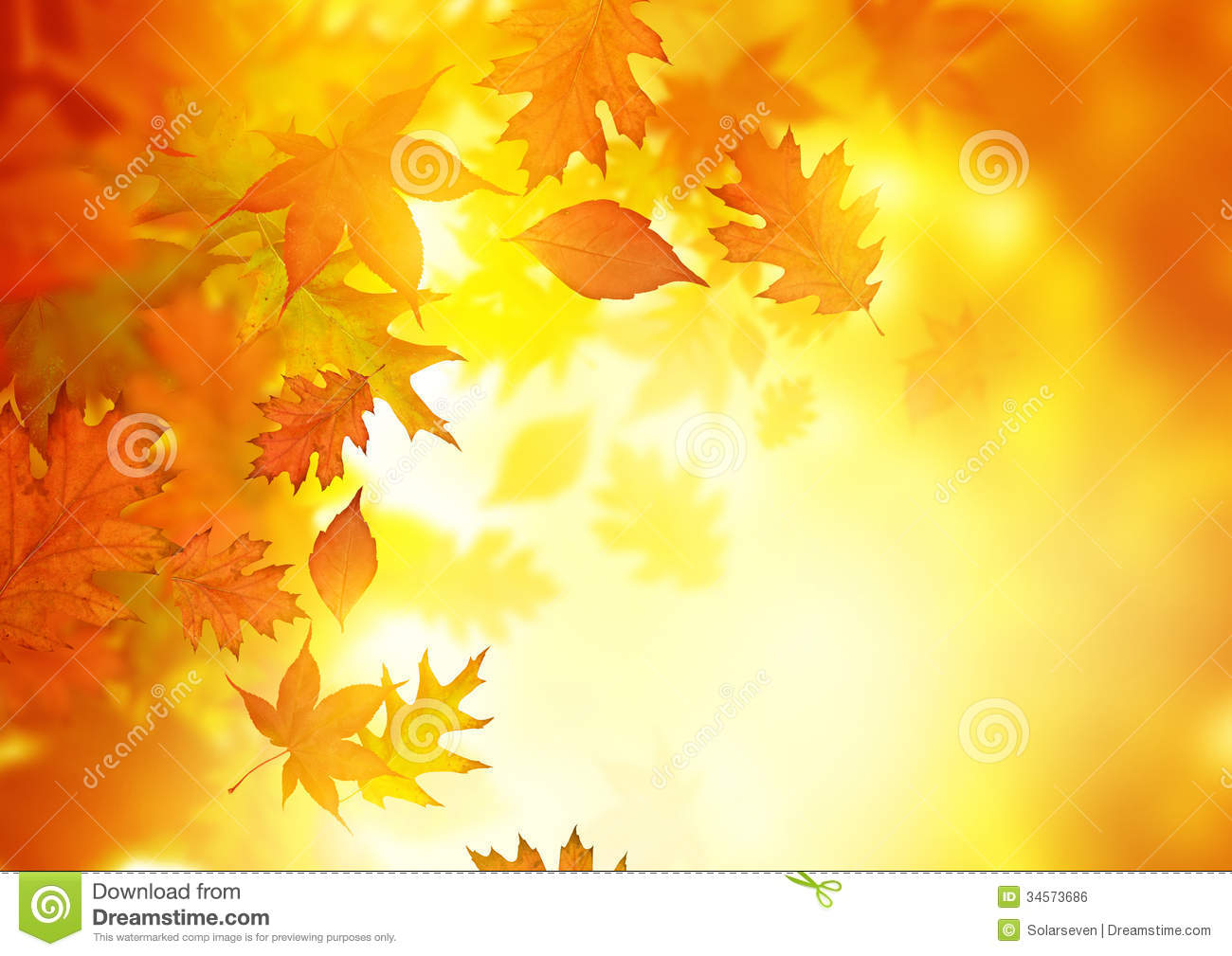 Fall Leaves Clip Art Wallpaper Autumn Falling Leaves Stock Photo Image Of Pure Natural