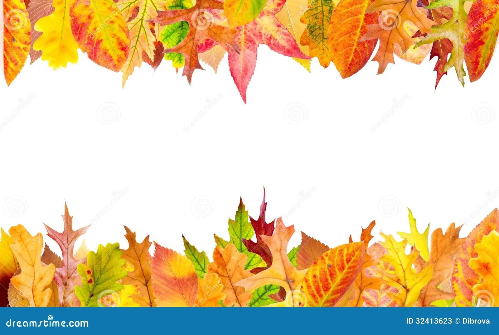 Fall Wallpaper Border Autumn Frame Stock Image Image Of Orange Decoration