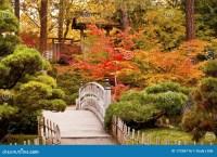 Autumn Japanese Garden stock photo. Image of orange, trees ...