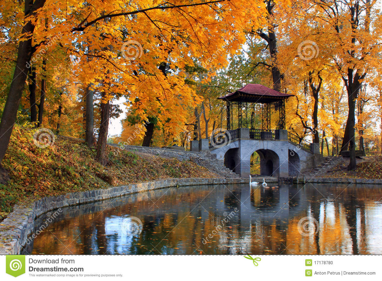Bing Fall Desktop Wallpaper Autumn At The Japanese Park Stock Photo Image Of Tree