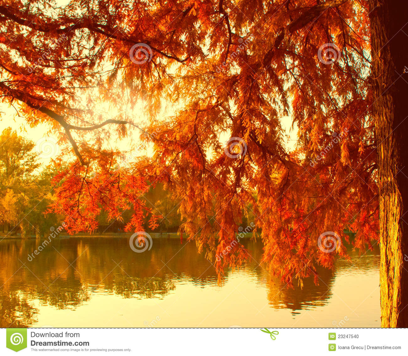 Autumn Leaf Fall Wallpaper Autumn Lake In Warm Colors Stock Photo Image Of Lake