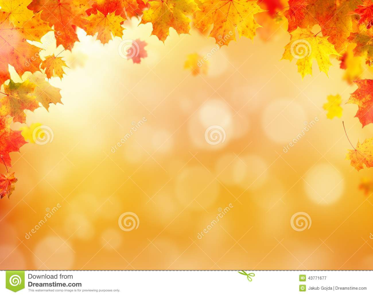 Falling Down Flowers Wallpaper Autumn Leaves Background With Free Space For Text Stock