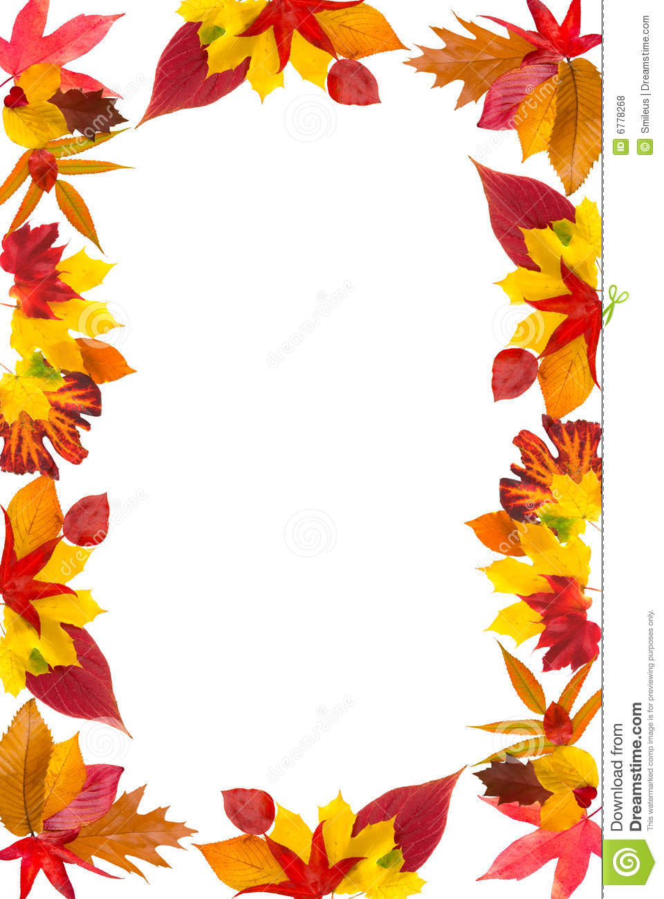 Falling Leaves Wallpaper Free Download Autumn Leaves Border Stock Photo Image Of Maple Life