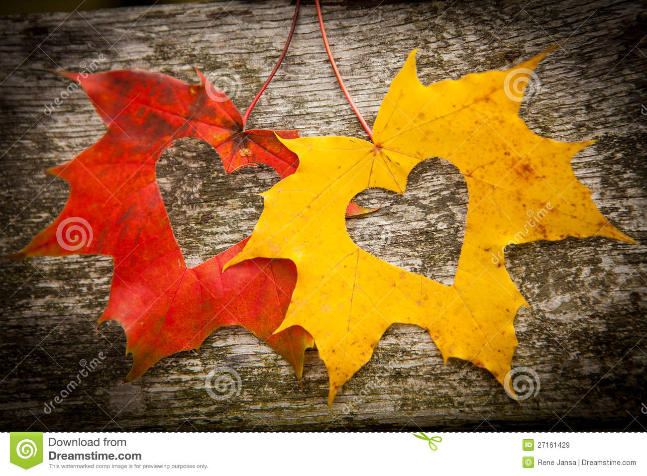 Rustic Fall Wallpaper Autumn Leaves And Love Hearts Stock Image Image Of