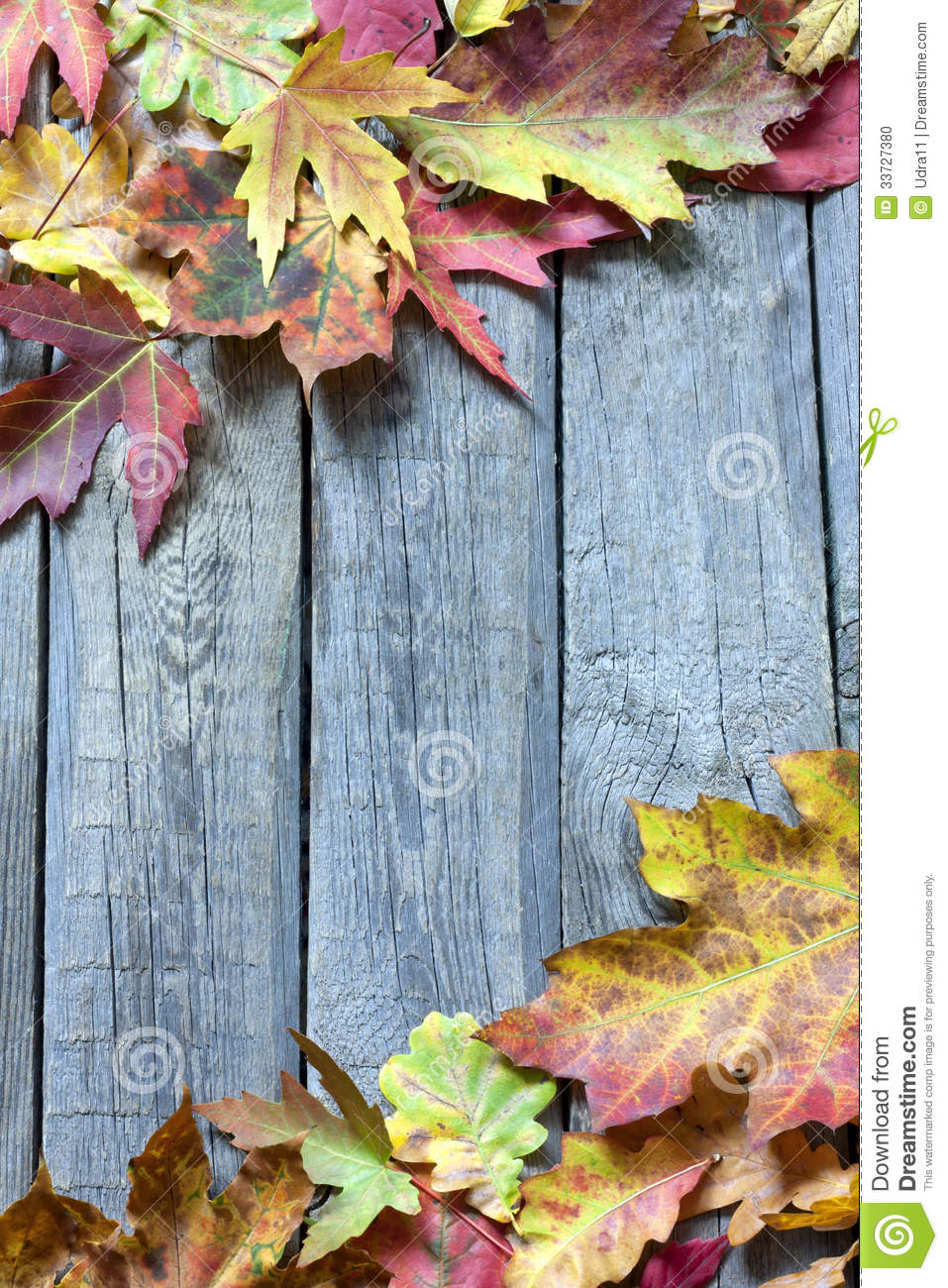 Maple Leaf Wallpaper For Fall Season Autumn Leaves On Vintage Boards Background Stock Photo