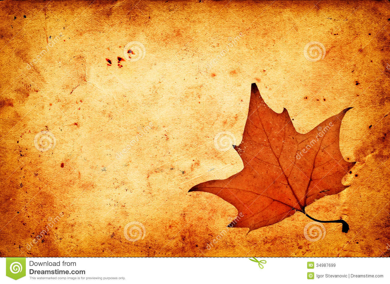 Fall Leaves Wallpaper Border Autumn Maple Leaf On Grunge Old Paper Stock Image Image