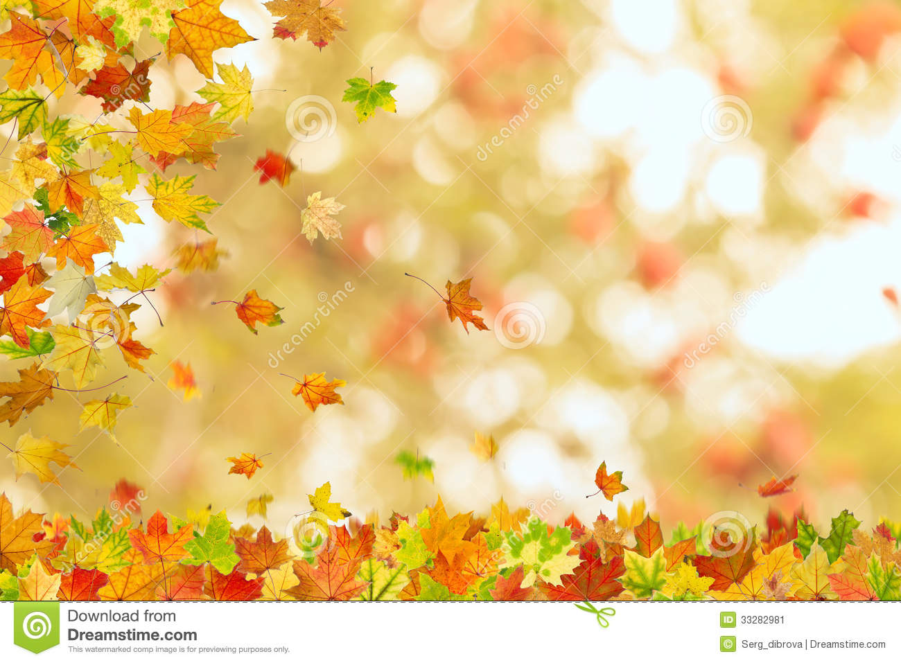 Animated Snow Falling Wallpaper Free Download Autumn Maple Leaves Falling Stock Image Image 33282981